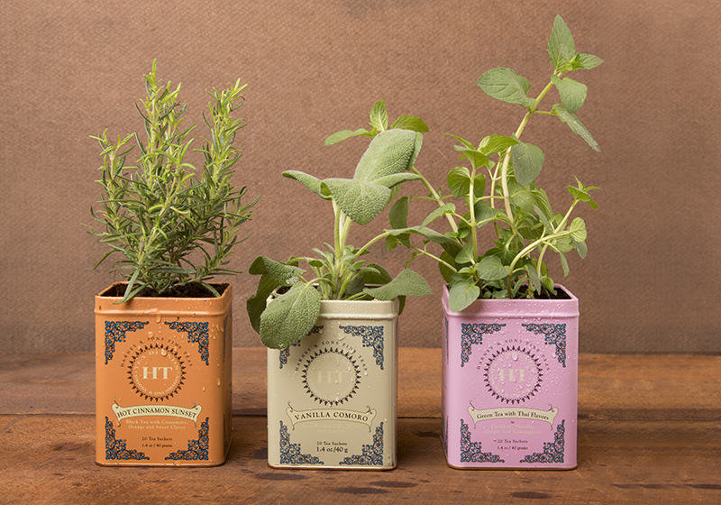 DIY Central herb garden tea tin